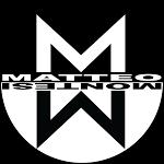Matteo Montesi | Youtuber